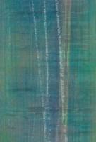 "Web Image of ""Winter Birch"""