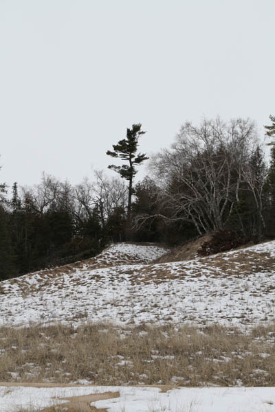 "Image of ""Spring Snow at Whitefish Dunes"""
