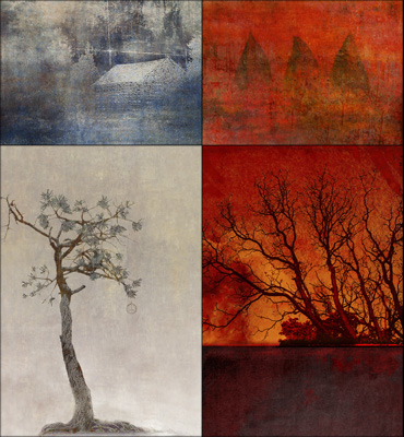 Digital Image of four greeting cards:Winter Cabin, Three Wishes, Intersection, and Bristlecone Peace